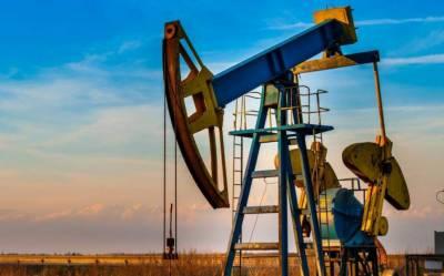 تیل و گیس کے شعبے میں پاکستان پٹرولیم ایکسپلوریشن اینڈ پروڈکشن اتھارٹی بنانے کا فیصلہ
