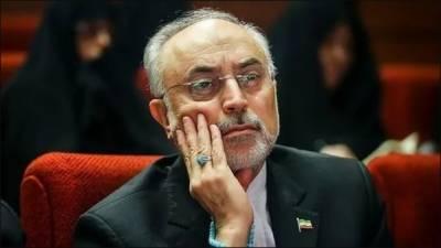 ایران کی جوہری توانائی تنظیم اوراس کے سربراہ پرامریکا کی پابندیاں عاید