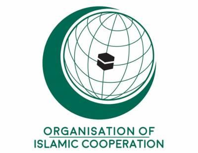 او آئی سی کا اسرائیلی کمپنیوں کی فہرست جاری کرنے کا خیر مقدم