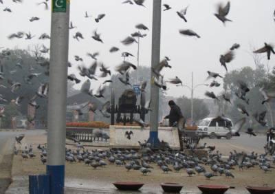 ملک کے بیشترحصوں میں موسم خشک اور سردرہنے کاامکان