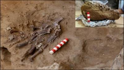 عراق میں 70 ہزار سال پرانی انسانی ڈھانچہ دریافت