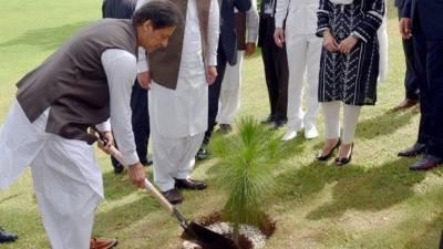 وزیراعظم عمران خان نےمیانوالی میں شجرکاری مہم کاآغازکردیا