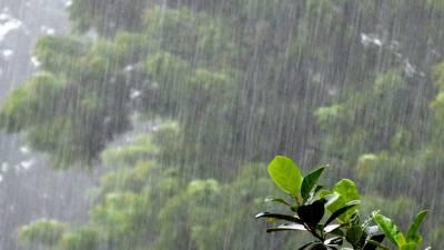پاکستان میں بارشوں کا سسٹم جمعہ تک رہنے کا امکان:محکمہ موسمیات کی پیشگوئی