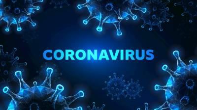 کورونا وائرس کسی بھی سطح پر 17 دن تک زندہ رہ سکتا ہے اور انسانوں میں منتقل ہوسکتا ہے:نئی تحقیق