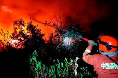 چین: جنگل میں لگی آگ بجھانے کے دوران 18 فائر فائٹرز سمیت 19 افراد ہلاک