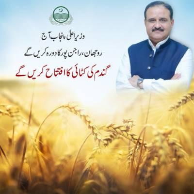 وزیراعلیٰ پنجاب آج گندم کٹائی کا آغاز کرینگے