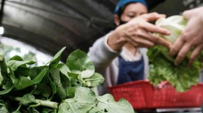رواں برس چین میں خوراک کی مستحکم فراہمی برقرار رہے گی