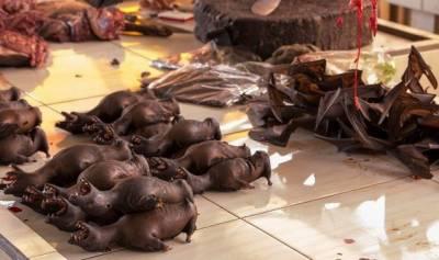 کورونا کے مرکز ووہان میں تمام جنگلی جانوروں کا گوشت کھانے پر پابندی عائد