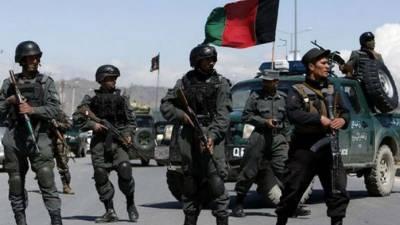 پاکستان اور امریکہ کاافغان حکومت اور طالبان کی جانب سے جنگ بندی اعلان کا خیرمقدم