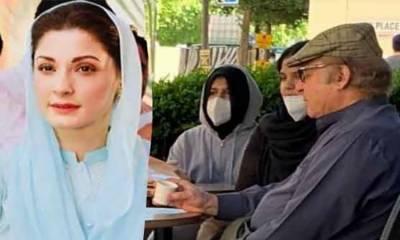 والد کی تصویر کا مقصد تشہیر نہیں تذلیل تھا: مریم نواز شریف