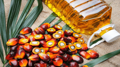 ملائیشن مارکیٹ میں پام آئل کے نرخوں میں 2.88 فیصد اضافہ