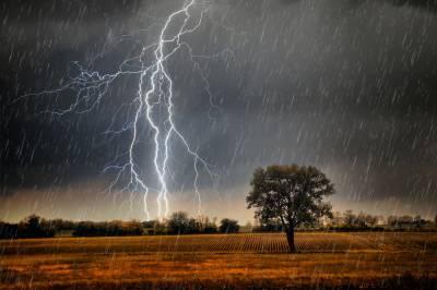 محکمہ موسمیات نے رواں ماہ کے آخر میں مون سون بارشوں کی نوید سنا دی