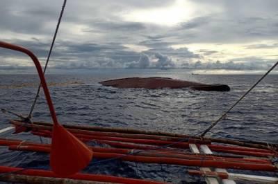 فلپائنی سمندر میں ماہی گیروں کی کشتی بحری جہاز سے ٹکرا گئی، 14 افراد لاپتہ
