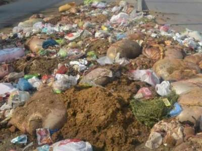 عید الاضحی پر آلودہ ماحول کے باعث وبائی امراض پھیلنے کا خدشہ