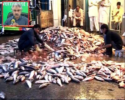 لاہور یوں کے لیے خوشخبری : مچھلی منڈی جلد شہر سے باہر منتقل کی جائےگی: صوبائی وزیر صنعت و تجارت میاں اسلم اقبال