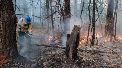 روس کے جنگلات میں 39 مقامات پر لگی آگ پر قابو پا لیا گیا