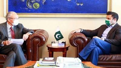جاپان پاکستان سے انفارمیشن ٹیکنالوجی،طبی عملہ کی بھرتی تیز کرنے کا خواہاں