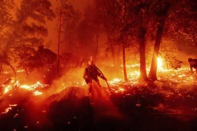 امریکہ کے جنگلوں میں لگی آگ نے تباہی مچا دی' 15 افراد ہلاک' لاکھوں افراد محفوظ مقامات پر منتقل