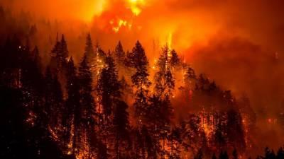 امریکی ریاست اوریگون کے جنگلات میں انتہا پسندوں پر آگ لگانے کا الزام بے بنیاد، ایف بی آئی