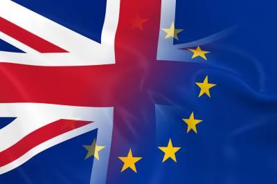 کار ساز اداروں کا برطانیہ اور یورپی یونین پر آزادانہ تجارت کے معاہدے کے لیے زور