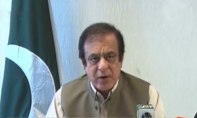 وزیراعلیٰ سندھ نے کل اسمبلی فلور پر غلط بیانی کی،جھوٹ اور ریاکاری ان عناصر کی سیاست کا ستون ہے:شبلی فراز