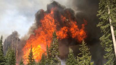 امریکا: کولوراڈو کے نیشنل پارک میں لگی آگ سے قریبی آبادی کو خطرہ، انخلا کا حکم
