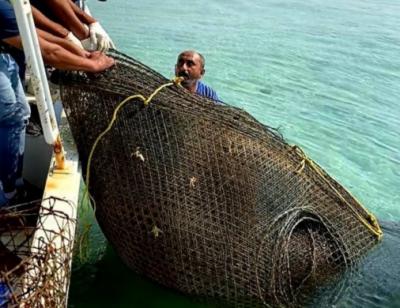 سعودی حکام نے مچھلیوں کے شکار کے 40 ممنوعہ جال قبضے میں لے لیے