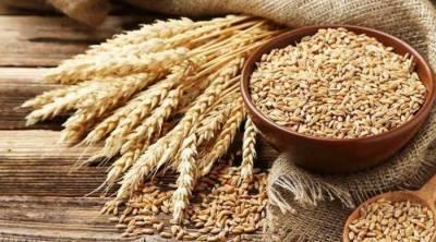 گندم کی فی من قیمت 2ہزار روپے مقرر