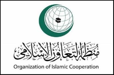 ابراہیم طہ پانچ سالہ مدت کے لئے اسلامی تعاون تنظیم (او آئی سی) کے نئے سیکرٹری جنرل منتخب