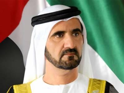متحدہ عرب امارات سائبر سیکیورٹی کونسل کی منظوری دےدی