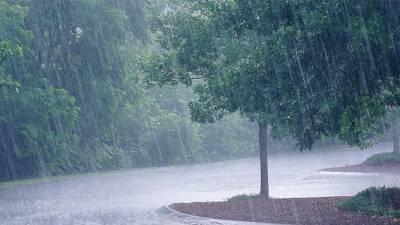 آئندہ24 گھنٹوں کے دوران پشاور، ملاکنڈ اور ہزارہ ڈویژن میں بارش کا امکان ہے ، محکمہ موسمیات