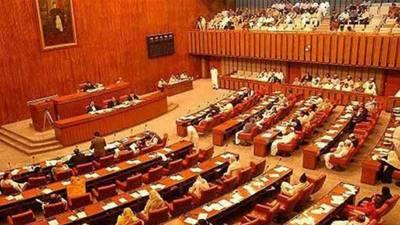 سینیٹ نے پاکستان کے ماحولیاتی تحفظ کے بل 2020 کی منظوری دی