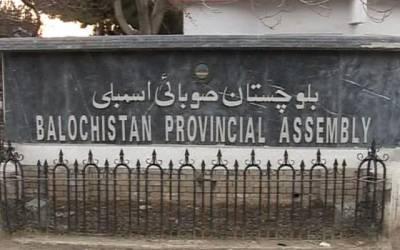 بلوچستان سینیٹ انتخابات ، متحدہ اپوزیشن کے مولانا عبدالغفور حیدری اور عبدالقادرکامیاب