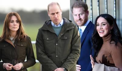 ہیری اور میگھن کا انٹرویو ، شہزادہ ولیم شاہی خاندان کی حمایت میں بول پڑے
