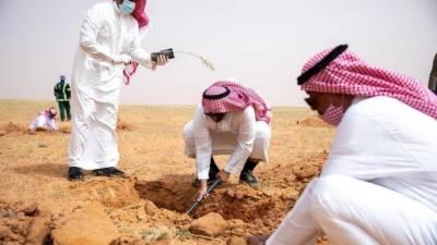سعودی عرب،شاہ عبدالعزیز ریزرو میں ایک لاکھ پودوں کی شجر کاری مہم شروع