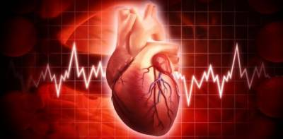 نائٹریٹ سے بھرپور سبزیوں کا روزانہ استعمال امراض قلب کا خطرہ کم کرسکتی ہیں, تحقیق