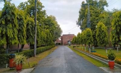 جنوبی پنجاب، بالائی خیبرپختونخوا میں آج گرج چمک کیساتھ بارش کا امکان:محکمہ موسمیات