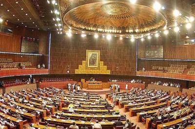 قومی اسمبلی میں آئندہ مالی سال کے بجٹ پر عام بحث ساتویں روز بھی جاری رہی ، اپوزیشن کی شدید تنقید