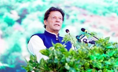آئندہ نسلوں کے لیے سرسبز پاکستان چھوڑ کر جائیں گے: وزیر اعظم