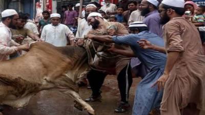 عیدالاضحی کے دوسرے روز اہل ایمان جانورقربان کررہے ہیں