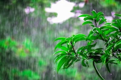 محکمہ موسمیات نے آئندہ 12 گھنٹوں کے دوران متعدد علاقوں میں موسلا دھار بارش کی پیشنگوئی کردی