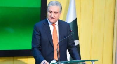 حکومت بیرونِ ملک مقیم پاکستانیوں کو قوم کا اثاثہ سمجھتی ہے:شاہ محمود قریشی