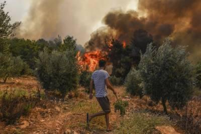 ترکی کے جنگلات میں لگی آگ ممکنہ سازش قرار