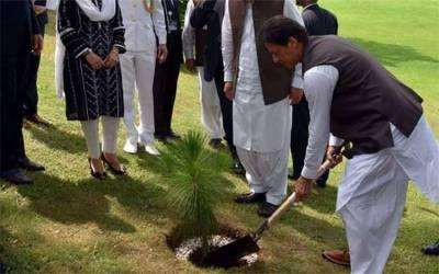 اربن فاریسٹری، وزیراعظم 4 اگست کو مصنوعی جنگل میں پودا لگائیں گے