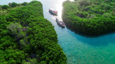 جزائر فرسان کا قومی جنگل یونیسکو کی فہرست میں شامل