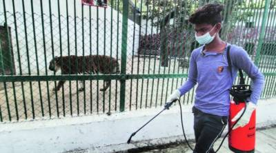 بھارت، چڑیا گھر میں عالمی وبا کے دوران جانور