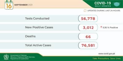 24 گھنٹوں کے دوران 56 ہزار 778 کورونا ٹیسٹ کئے گئے ہیں،وزارت قومی صحت