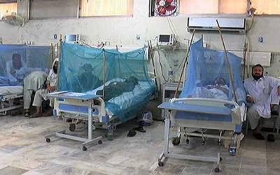 اسلام آباد : ڈینگی پھر سر اٹھانے لگا،2مریض جاں بحق