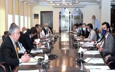 وزیر خزانہ شوکت ترین کی زیر صدارت ای سی سی اجلاس آج ہوگا