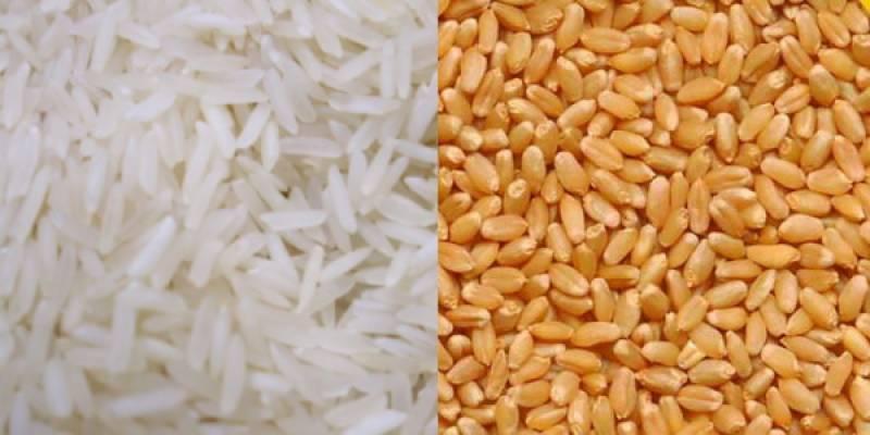 بھارت میں چاول کی قیمت 3، گندم 2 روپے کلو مقرر